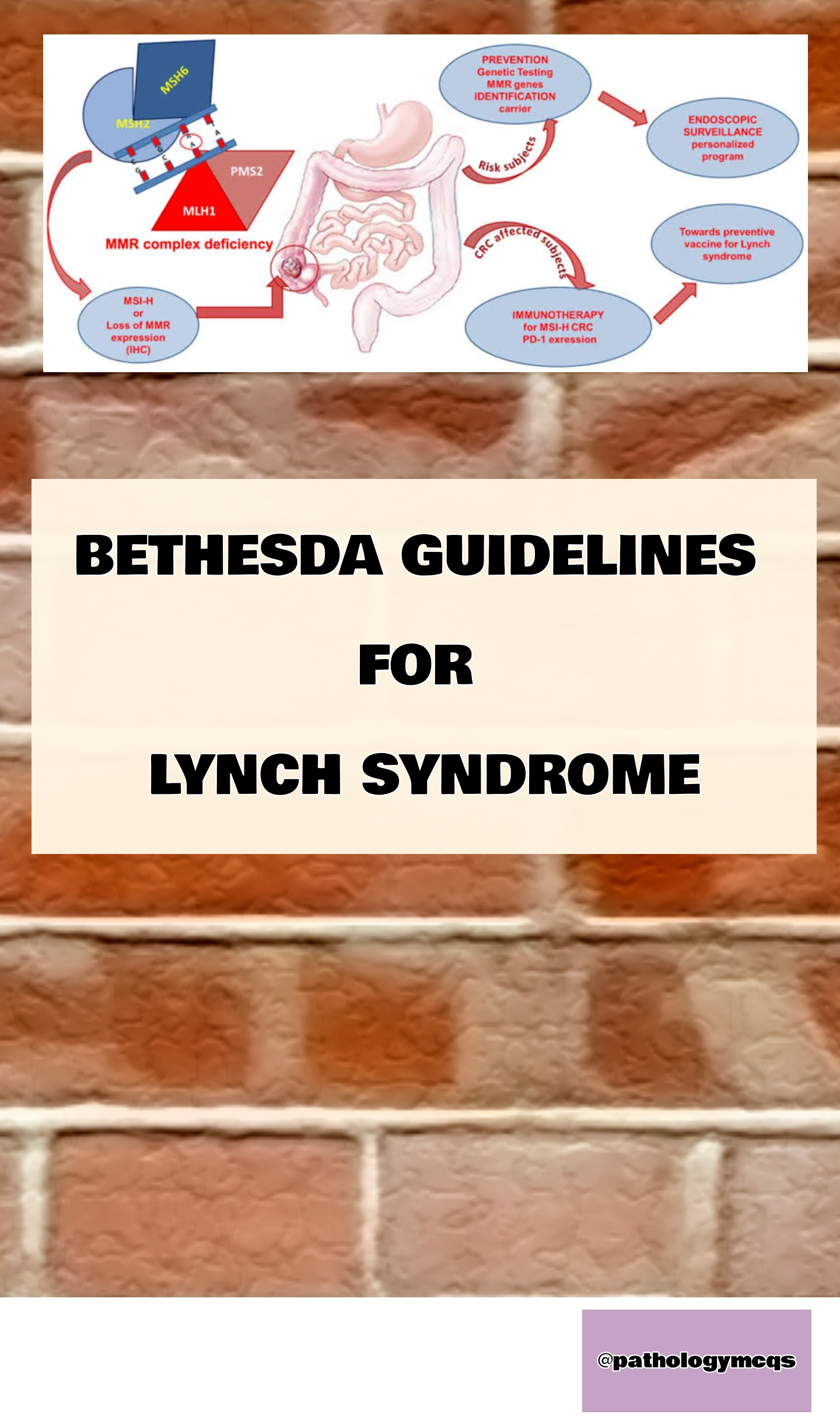 Bethesda guidelines to diagnose Lynch syndrome